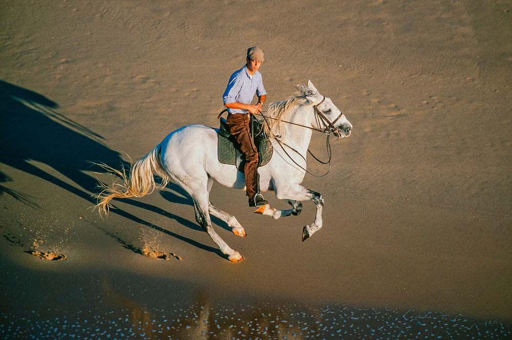 Aerial photo of a horseman, Portugal