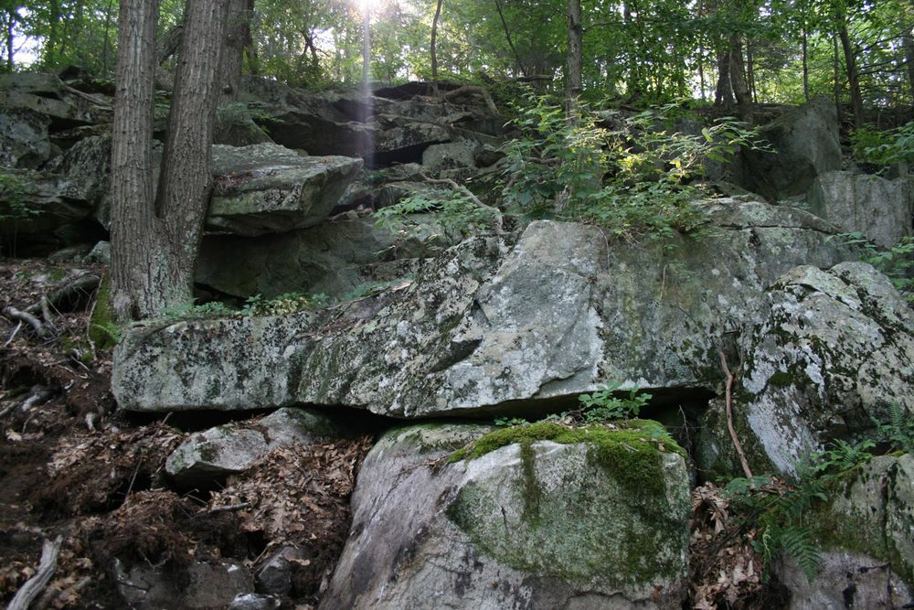 Natural rock fall in the woods