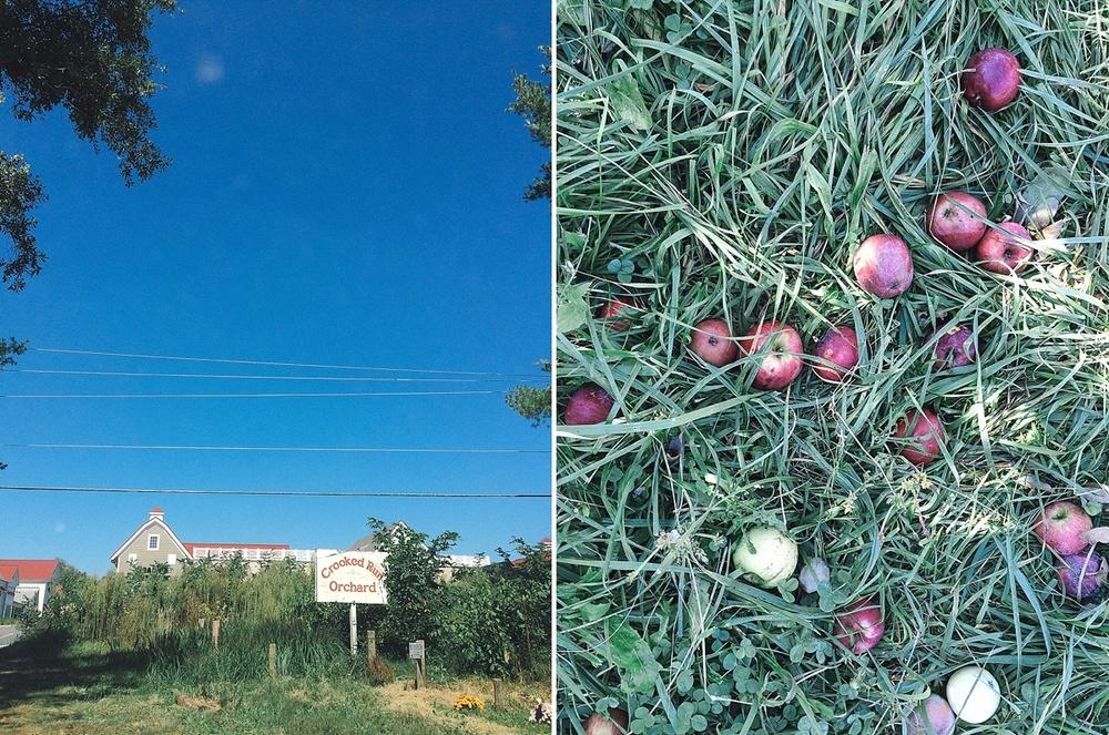 2-PLACES-studio-Travel-Photography-Crooked-Run-Orchard-VA-10-BLOG.jpg