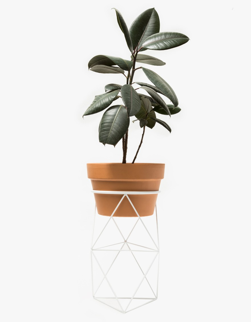 Eric Trine Double Octahedron Ring Planter $80