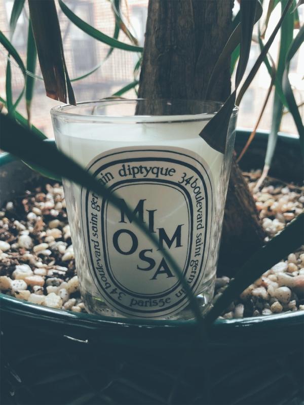 dyptique candle 2.jpg