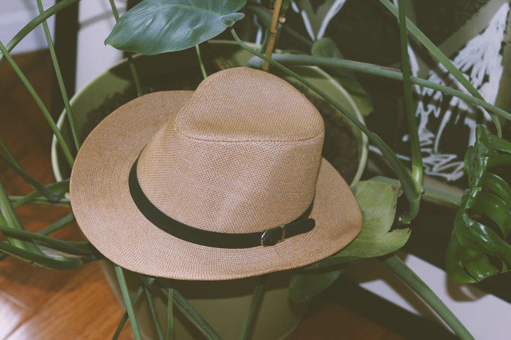 Brown Summer Hat.jpg