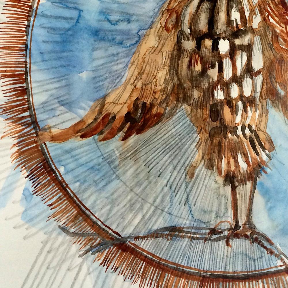 sketch_bird.jpg