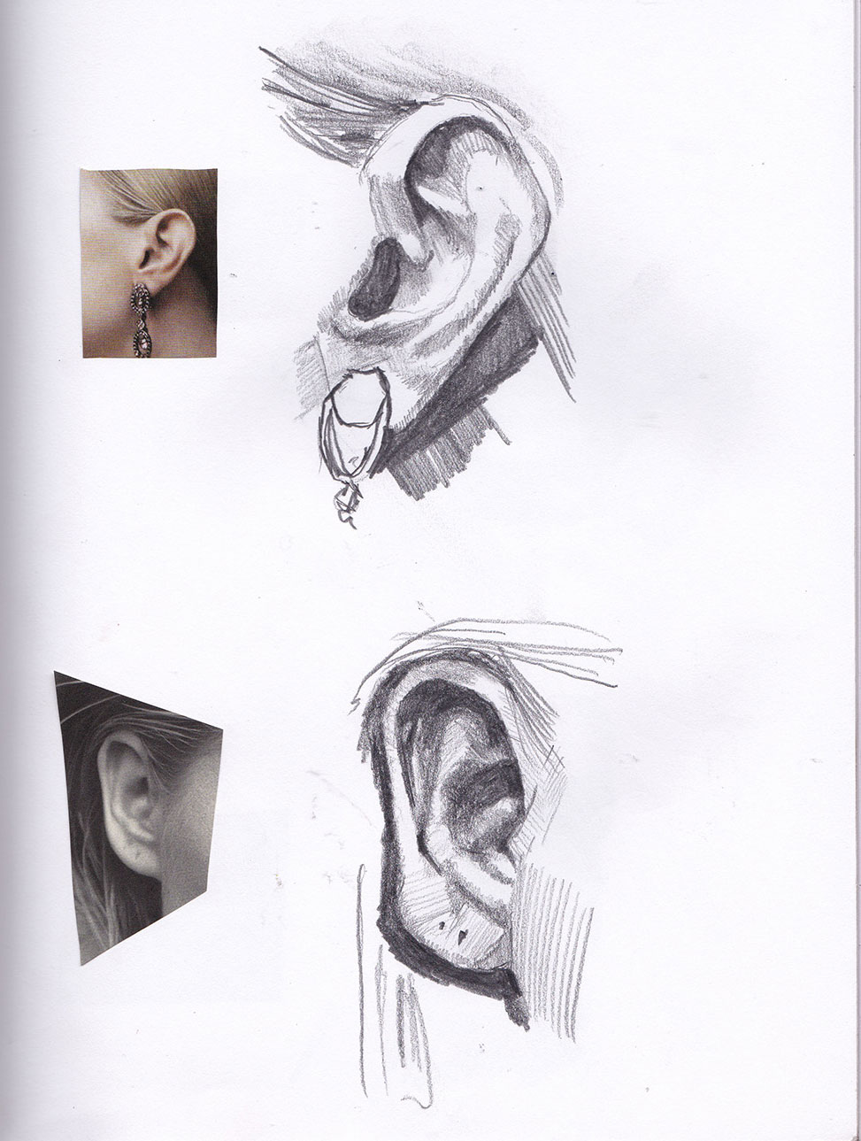 Feature Study - Ears