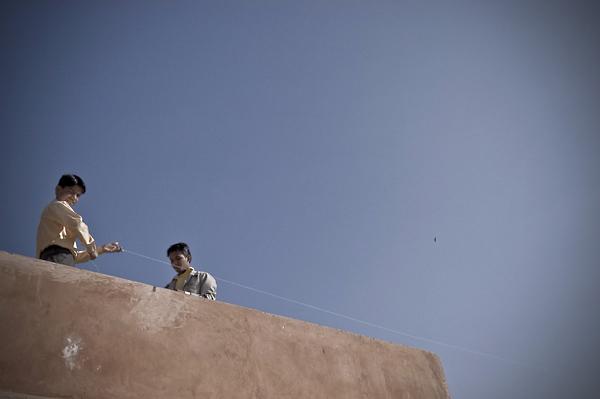 kite©AmeeReehal2009-1.jpg