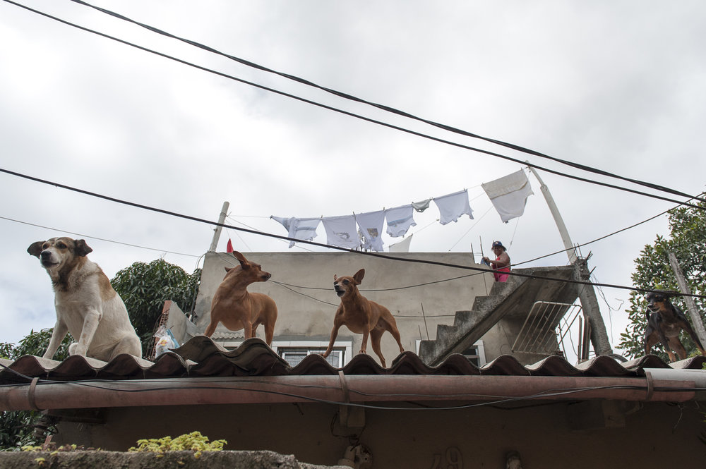 amee reehal favela rocinha (16 of 37).jpg