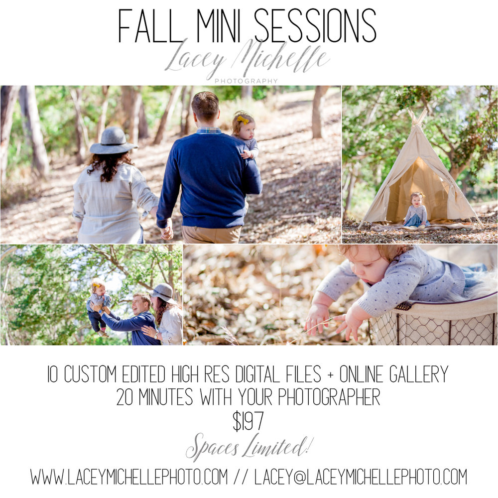 MINI SESSIONS_FALL_2.jpg