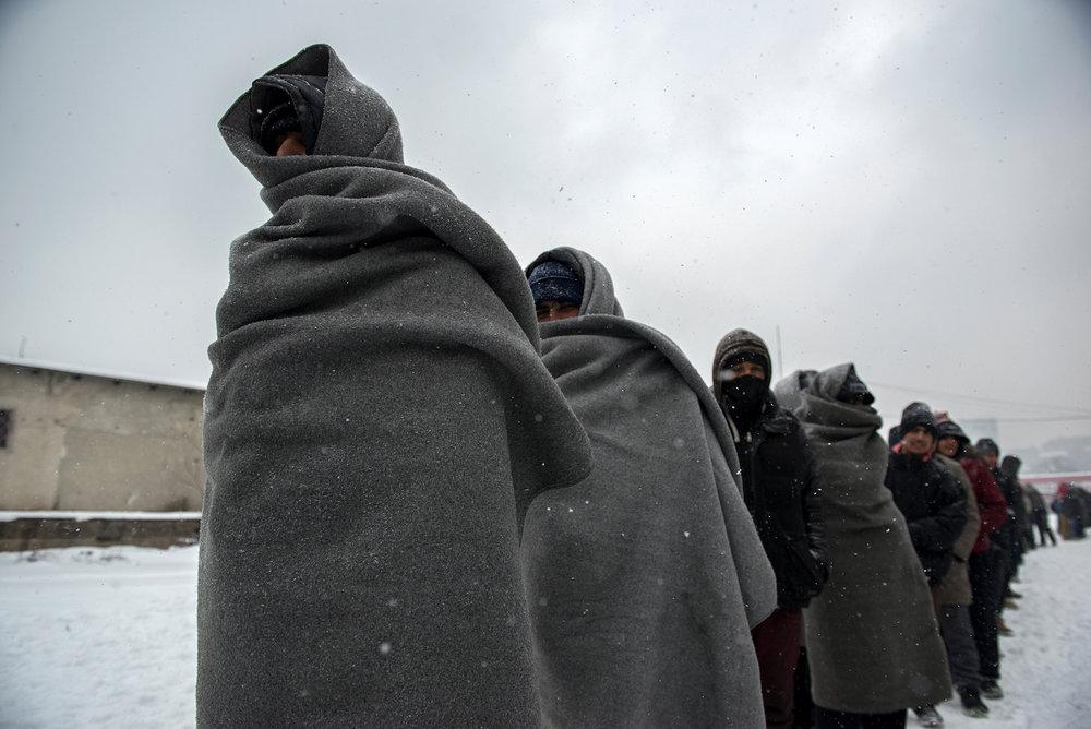 Migrants Winter Journey