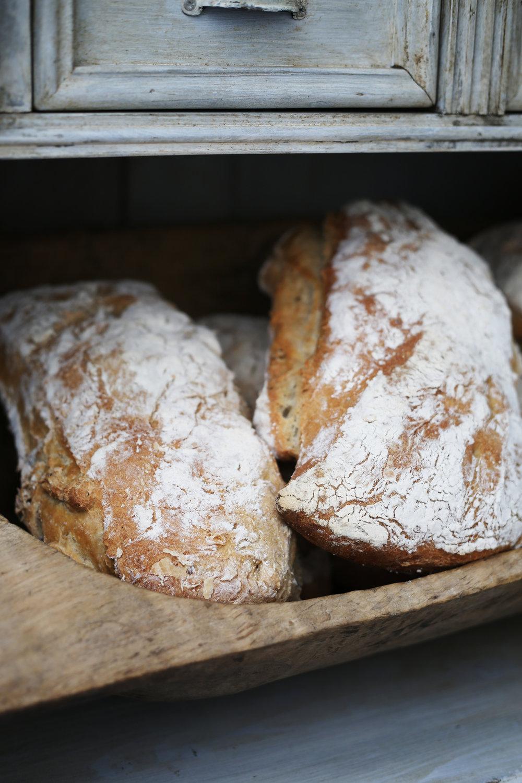 brood 3.jpg