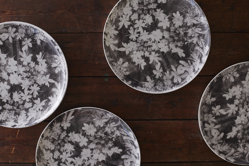 Wood Anemone dinner plates