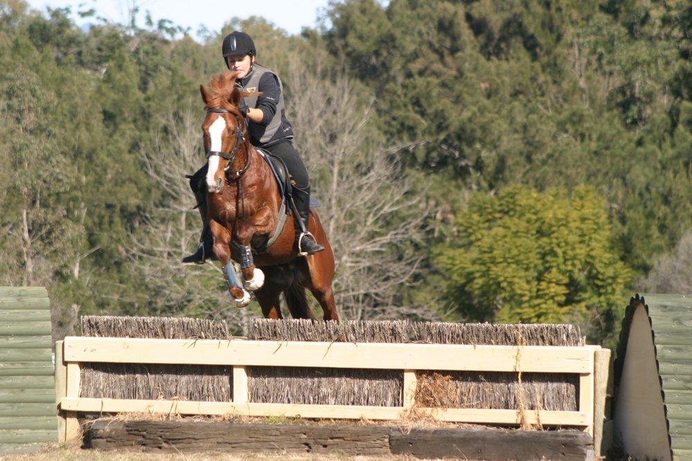 horse_yard_pic_eventing.jpg