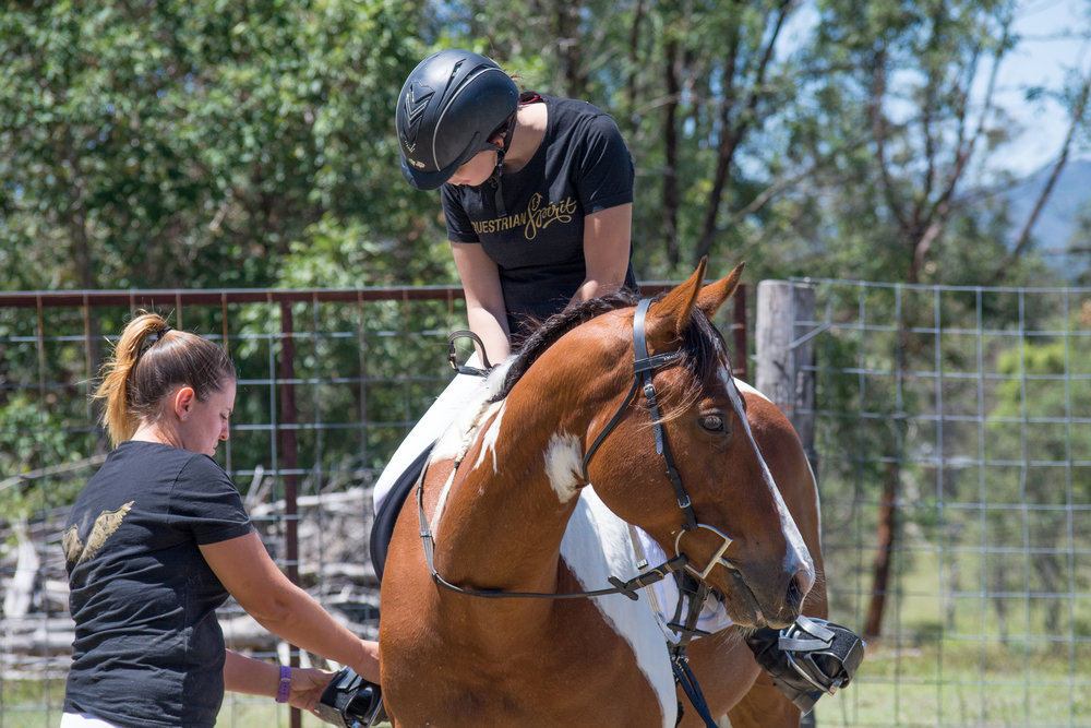 horseridinglessons.jpg