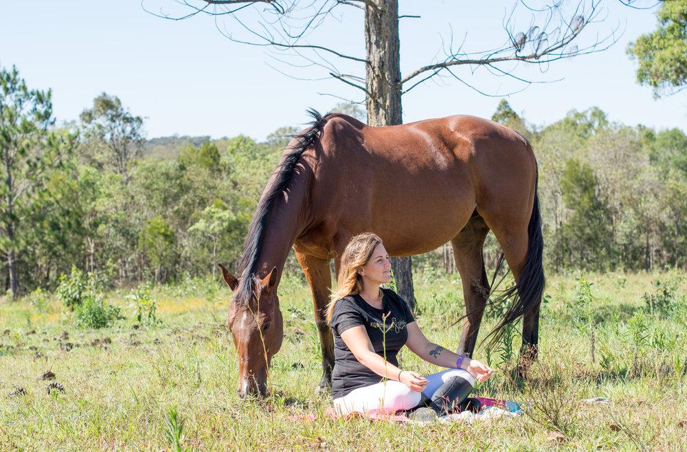 overcome horse fear