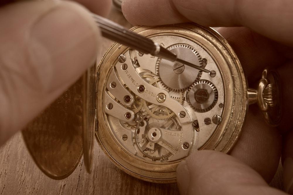 wristwatch anatomy
