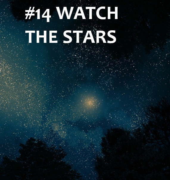 gaze at the stars