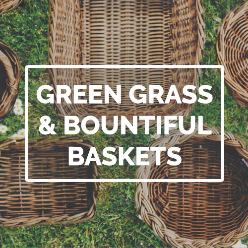 Green grass pod image.jpg