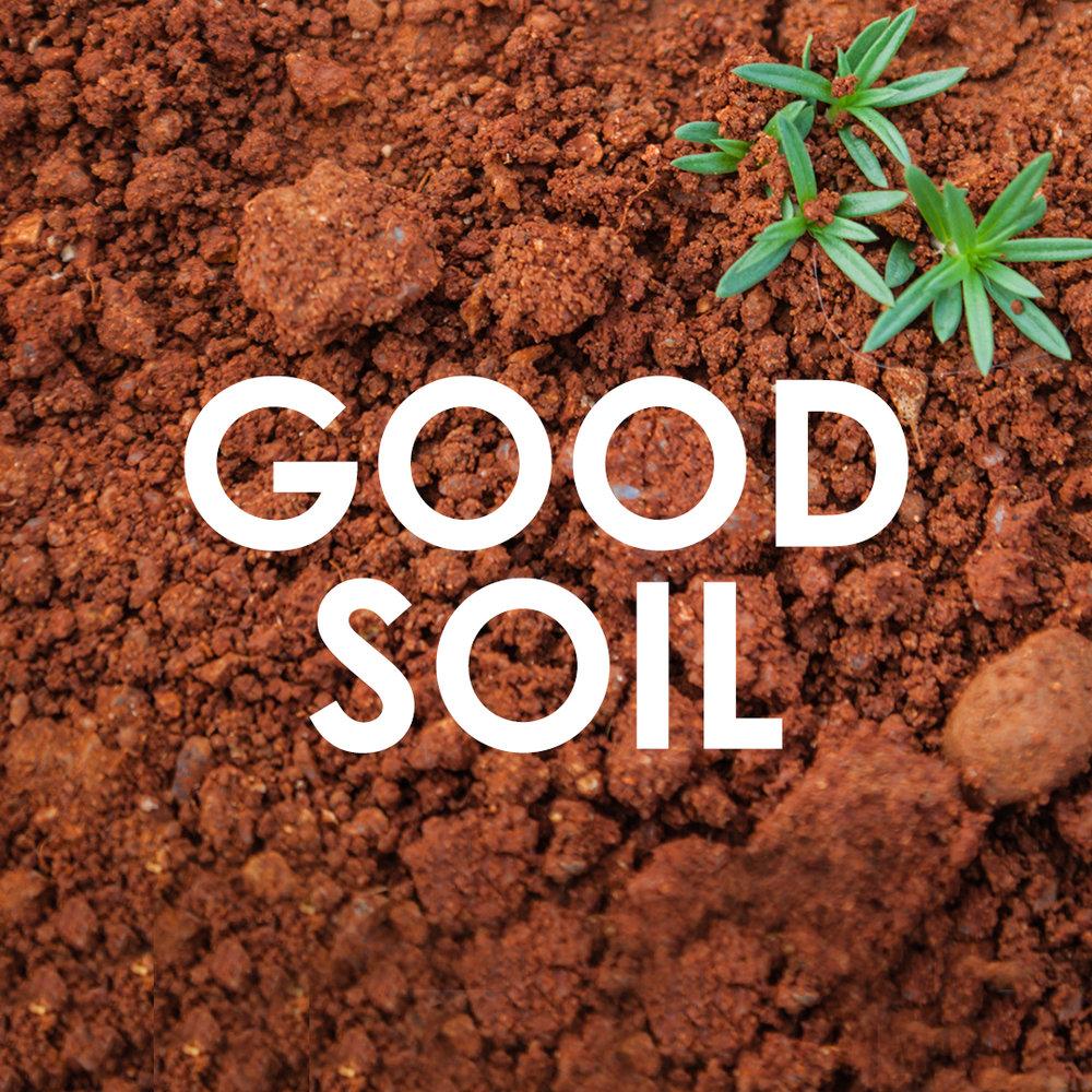 Good soil.jpg