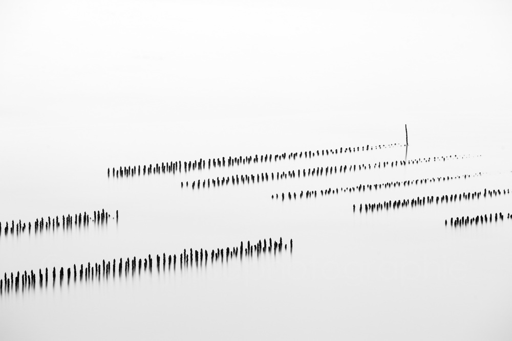 Sequence #7   (   2014   )   Edition : 37x56cm (ed°/8) & 60  x90cm (ed°/8)