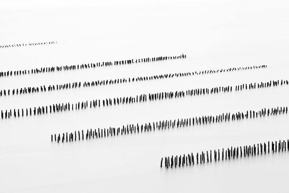 Sequence #4   (   2012   )   Edition : 37x56cm (ed°/8) & 60  x90cm (ed°/8)