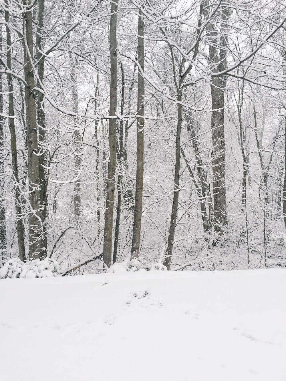 The scene in CT this morning!
