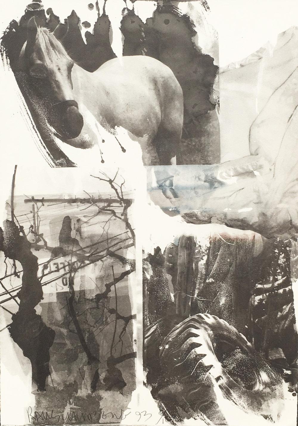 Horse Silk (Deluxe Edition) Aperture Cover - Print, 1993. 93.E006.