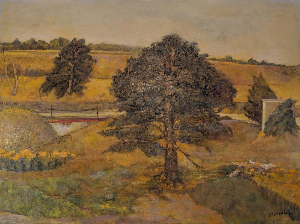 Carolyn Plochmann.   Late August-Springville Hill,  2002-3. Oil on canvas, 30 x 40 in.