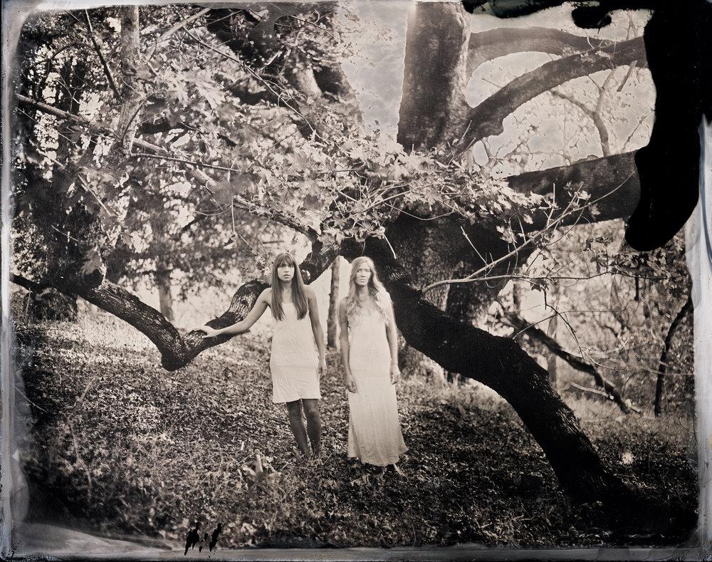Oak Bridge, wet collodion, Sean Peeler _ Sam Rivera.jpg