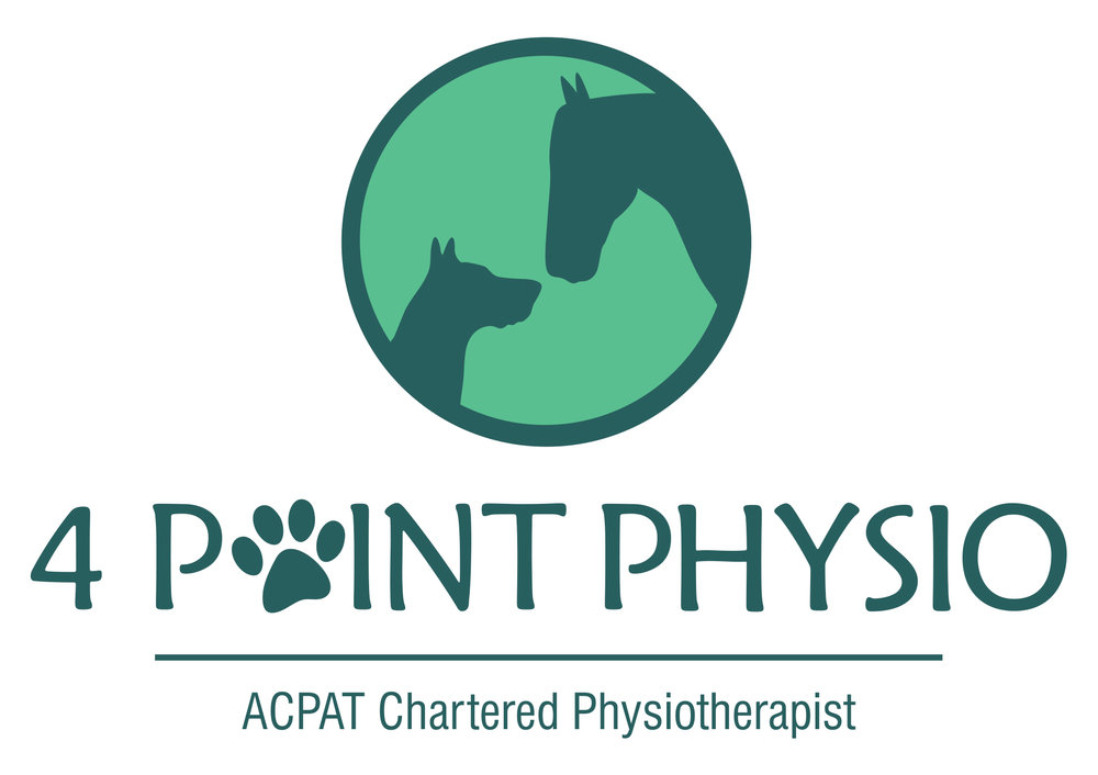 4 Point Physio