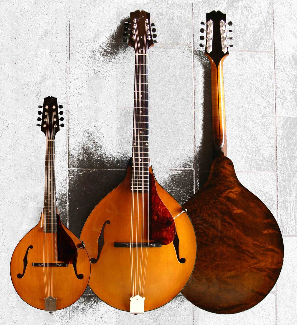Model 3jr octave mandolin . . . with Mod. 3jr mandolin