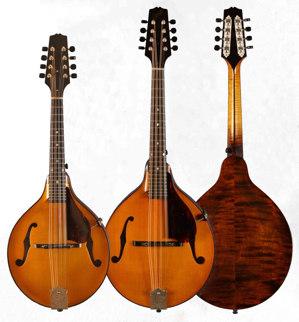 Model 3jr mandola . . . with Mod. 3jr mandolin