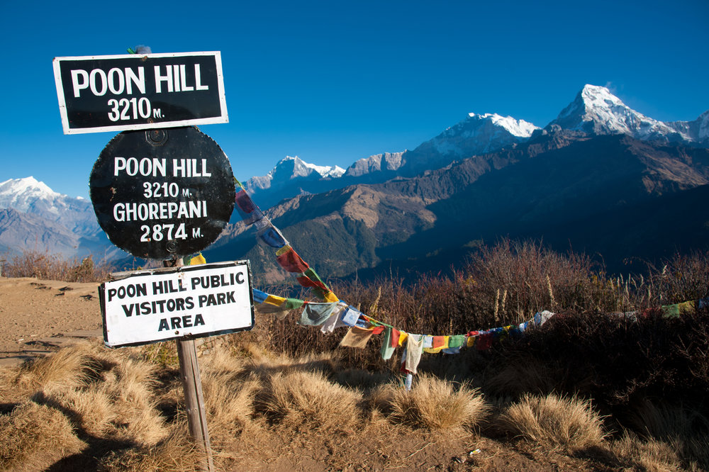 poon_hill_trekking.jpg