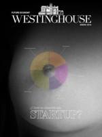 westinghouse-e1420714067249.jpg