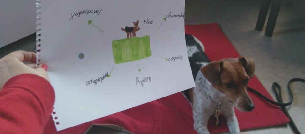 sessiondog.jpg