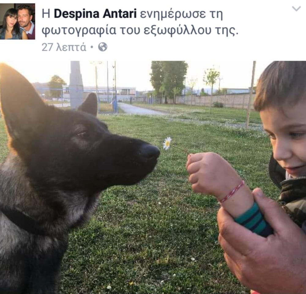 Η Αpril επισκέπτεται τον Γιωργάκη - Δεν χρειάζονται λόγια να περιγράψουν τα συναισθήματα του μικρού μας φίλου. Η εικόνα και το χαμόγελο του μιλάνε από μόνα τους! Οι σκύλοι βοηθοί αλλάζουν την ζωή των παιδιών με αναπηρίες και των οικογενειών τους!