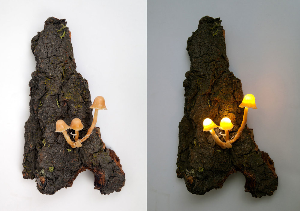 "Untitled (mushroom sconce).  2014 - plastic and LED lights on wood. 12"" x 6"" x 5""."