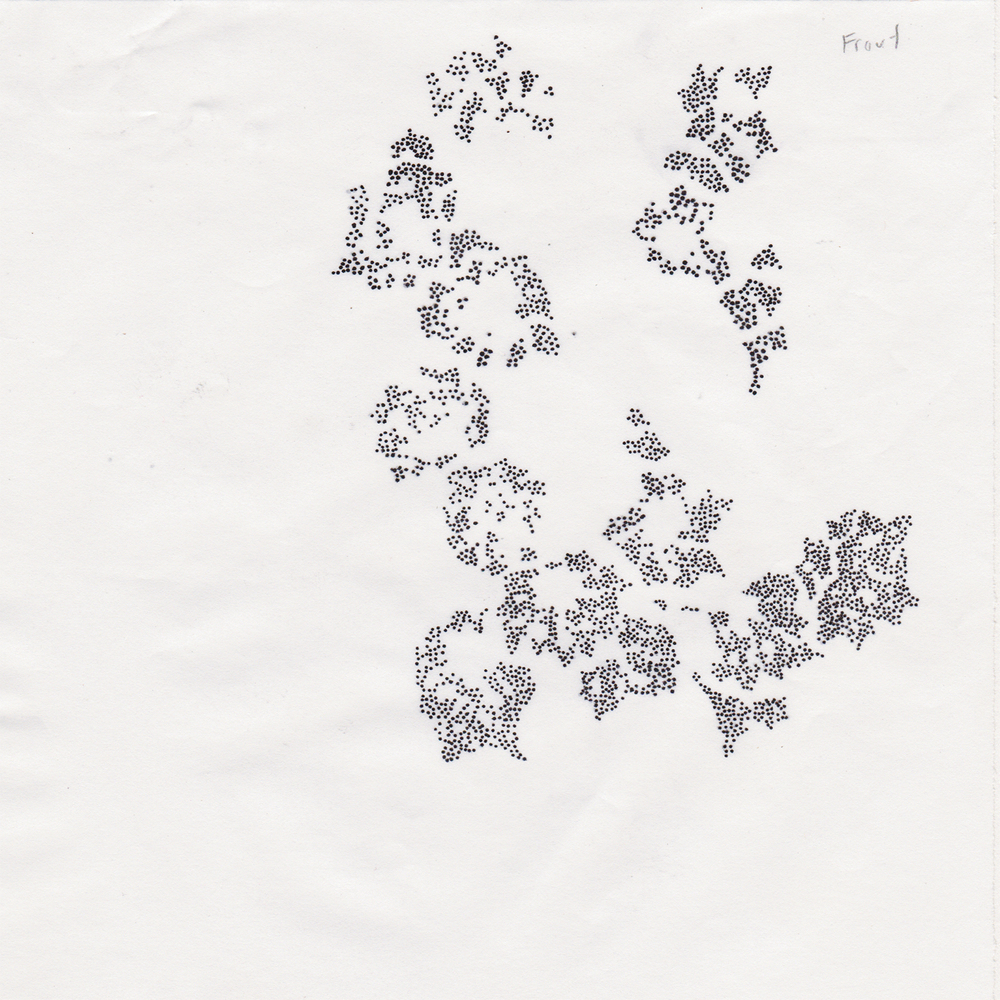 MountainLaurel_Scan_Stencil_08.jpg