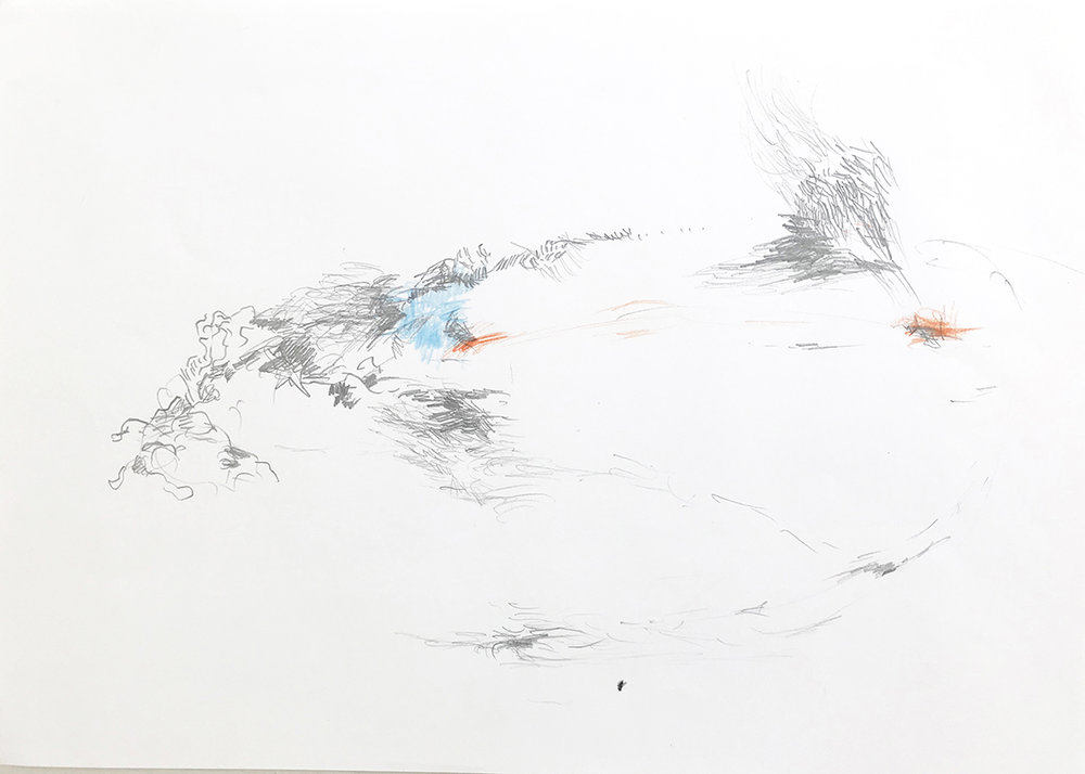 08.07.18 «Slåsskamp på stranden»
