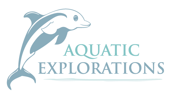 Aquatic Explorations