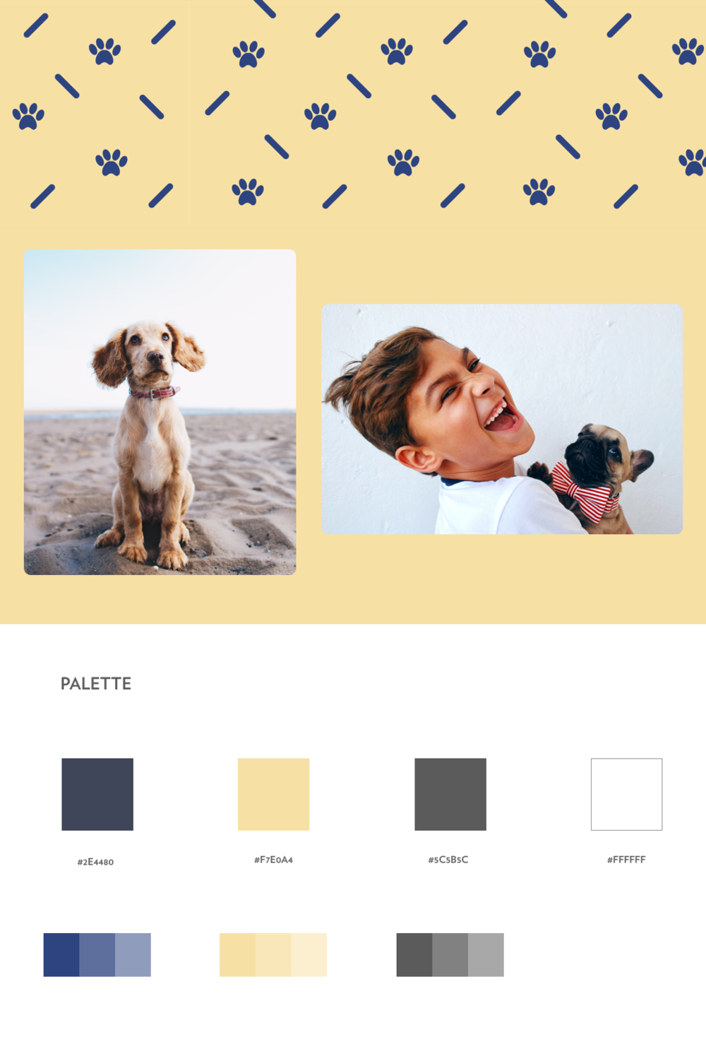 PetMatch_Colors&Brand.png