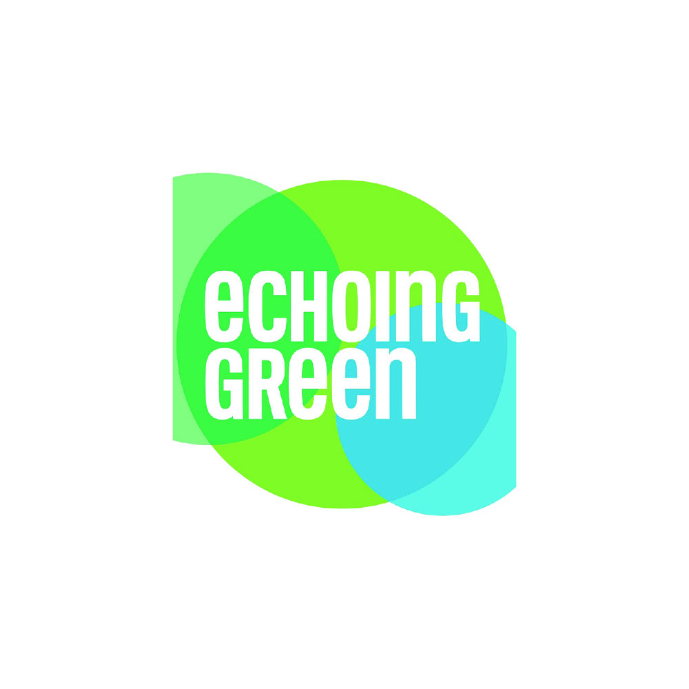 Echoing Green    Echoing Green identifies tomorrow's transformational leaders today. Through its Fellowships and other innovative leadership initiatives, Echoing Green spots emerging leaders and invests deeply in their success to accelerate their impact.