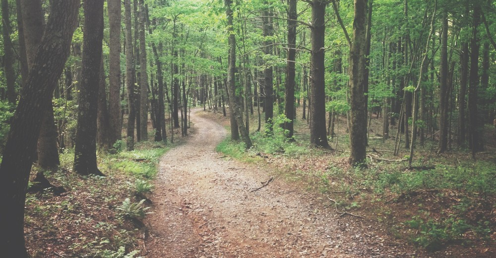 path to your calling jeff goins