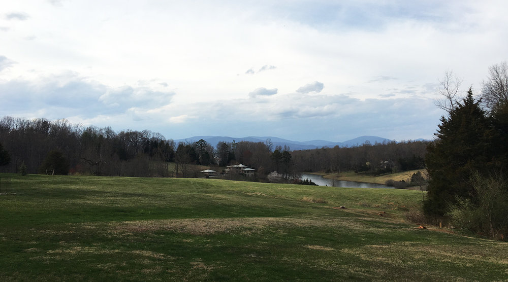 VIEW OF BLUE RIDGE MOUNTAINS FROM HOUSE