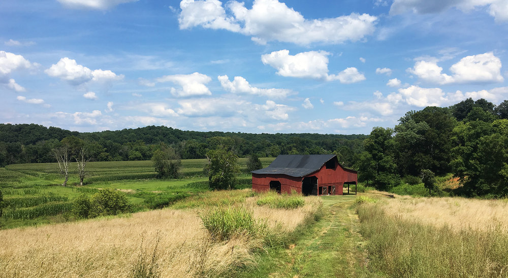 EXISTING BARN WITH FIELDS AND JAMES RIVER BEYOND