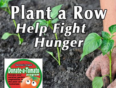 Have a home garden? Plant an extra row for Gemma's Angels. Our volunteers will come to you and pickup your donation. Click  here.