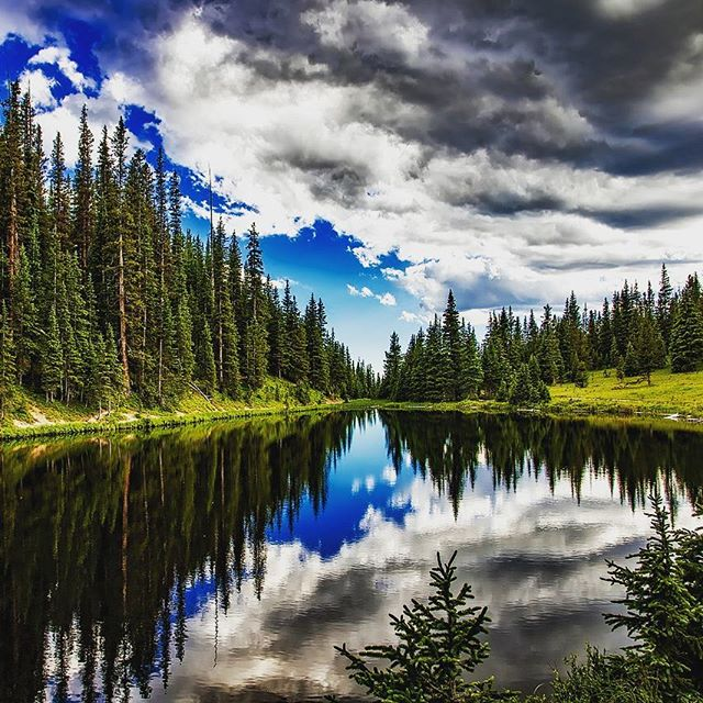 Sometimes you just want to be one with nature. #colorado #wilderness #beautiful #nature #outdoors #outdoorlifestyle