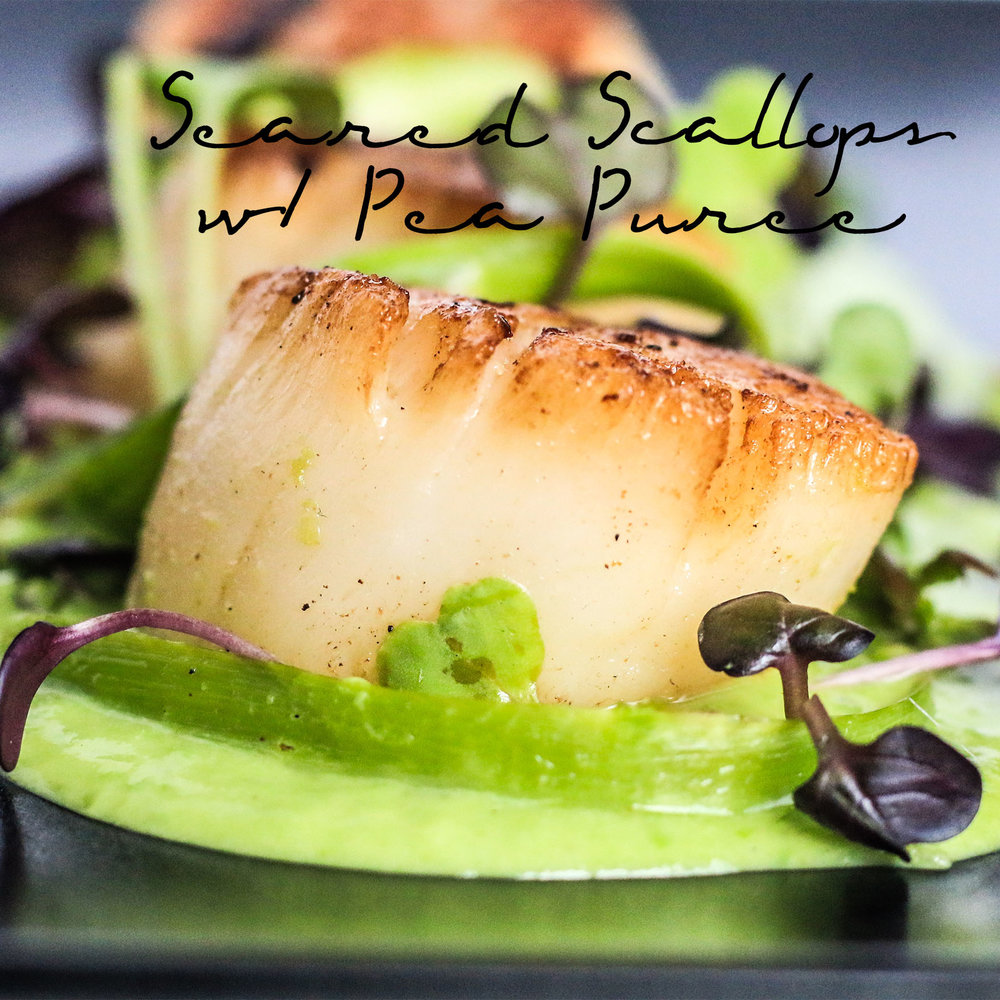 Best Seared Scallop Recipe