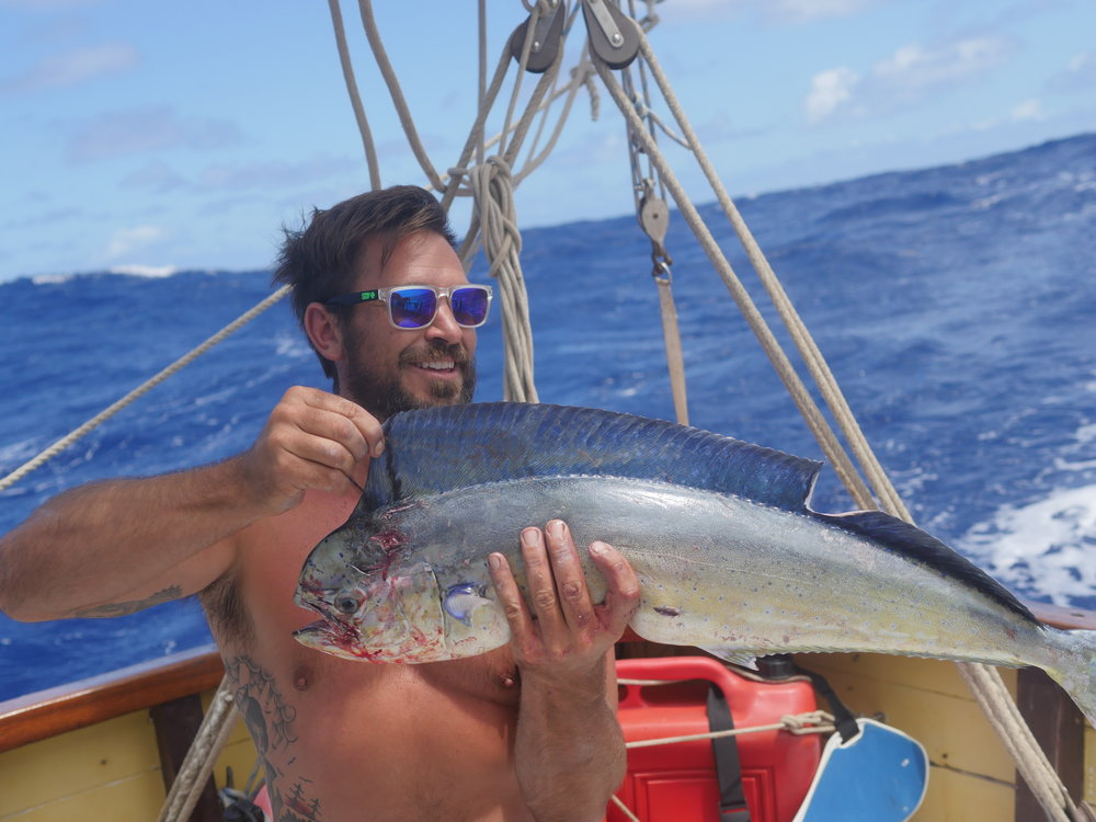 Brio and the Mahi Mahi (dolphin fish) that had been on the line for most of the morning without any of us realising.