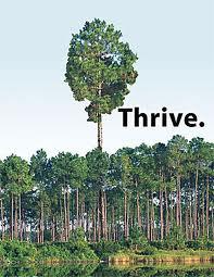 thrive13.jpg