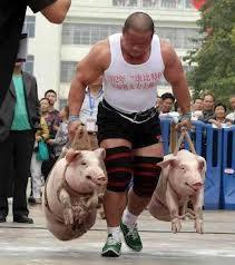 Bringin' home the bacon ...
