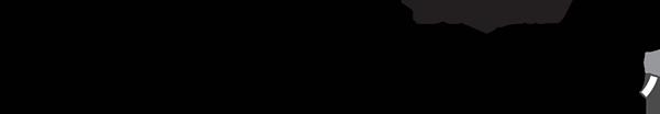 fenix-xcell-logo.png